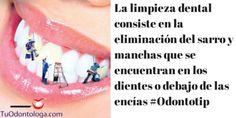 Una limpieza dental elimina el sarro y las manchas de la dentadura  #odontotip