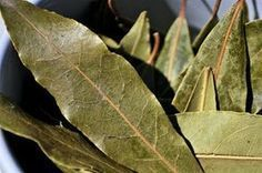 Burn A Few Dried Bay Leaves In Your Home And Feel An Immediate Change To The Atmosphere - Juicing for Health Burning Bay Leaves, Home Remedies, Natural Remedies, Mental Health Illnesses, Bebidas Detox, Stress Relief Tips, Juicing For Health, Get Healthy, Loosing Weight