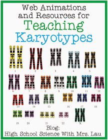 High School Science With Mrs. Lau: Teaching about Karyotypes and Chromosomes