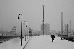 Shadow in the snow - Senigallia molo di ponente