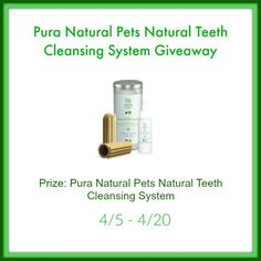 Want to help your dog have super clean teeth? Enter to win a Pura Natural Pets Natural Teeth Cleansing System here!
