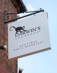 Darwin's Townhouse - Brand Identity & Photography In Shropshire Website Menu, Brand Identity, Branding, Stunning Photography, Black And White Illustration, Darwin, Townhouse, Creative, Brand Management