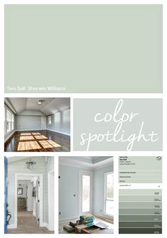 Sherwin Williams Sea Salt: Color Spotlight - - Highlighting why Sherwin Williams Sea Salt is one of the most popular and best selling paint colors out there today. Check out our Sea Salt tips! Green Paint Colors, Interior Paint Colors, Paint Colors For Home, House Colors, Color Walls, Wall Colors, Interior Design, Cottage Paint Colors, Calming Paint Colors