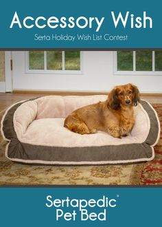 The Sertapedic Pet Bed is the perfect companion for your pet and a great way to get your bed back! Need this so our puppy gets as spoiled as possible!