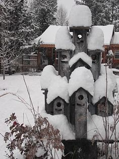 Bird condo...peek of the cottage behind it. LOTS of snow that winter.