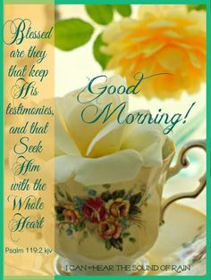 Good Morning Motivation, Good Morning Quotes, Morning Greetings Quotes, Morning Messages, Scripture Verses, Bible Scriptures, Psalm 119, Psalms, Daily Encouragement