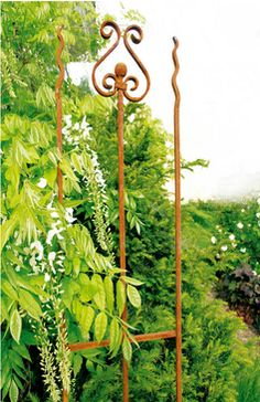 schmaler Zaun für Nischen ideal Clematis, Obelisk, Garden Inspiration, Arch, Outdoor Structures, Trellis Ideas, Wrought Iron, Fig Tree, Climbing Roses