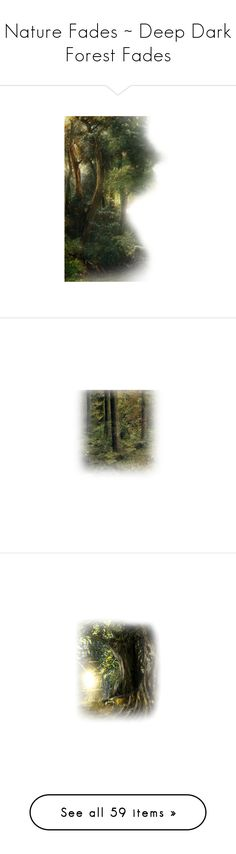 """""""Nature Fades ~ Deep Dark Forest Fades"""" by funkyjunkygypsy ❤ liked on Polyvore featuring backgrounds, landscape, tubes, nature, art, filler, scenery, forest, trees and fades"""