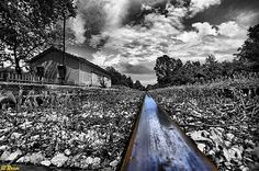 Rail to... by Rossi