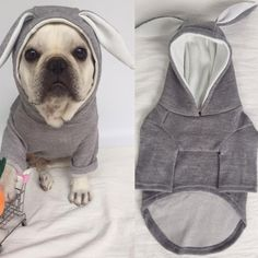 Buy Winter Clothing Warm Cute Bulldog Hooded Dog Apparel Puppy Clothes Dog winter Coat Pet dog Clothes at www.bulldoglovers.net! Free shipping to 185 countries. 45 days money back guarantee.