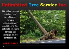 Storm Damage Tree Service Columbia  When you are procuring a tree removal service, ensure that you just use authorized contractual workers and they ought to have protection. You would prefer not to be held subject in the event that anybody ends up plainly harmed simultaneously, if a mischance happens. You may likewise check if the people that the organization will send at your place have the vital preparing that demonstrates that they can do the job…