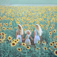 I could use maddie, Audrey, and han to recreate this. Just gotta find a field full of sunflowers:)