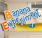 Banana Science Project - You'll need 2 unripe bananas. Mark them with felt tip pens so nobody eats your experiment. Put one in the refrigerator and leave one sitting on the counter. Watch for a week to see which banana turns brown fastest. Volcano Activities, Fun Activities, Facts For Kids, Fun Facts, August Holidays, February, Banana Facts, Daffodil Day