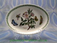 Portmeirion Botanic Garden Oval Platter Steak Plate Dog Rose,1982