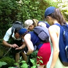 Will our guide Nicola be able to answer all the curious questions that are asked while on our walks? Too often we ignore the beauty of the world around us, when in fact just a few hours in a forest is all it takes to re-discover how fascinating nature can be.
