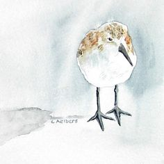 """sandpiper on the beach (from """"6catsart"""" on etsy)"""