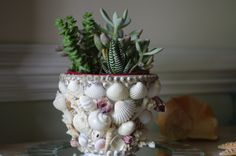 Beach Decor Flower Pot Seashell Coral and by beautifuldetailswed