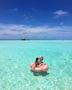 The most detailed travel guide about the Maldives for every budget! Learn everything about the Maldives and plan your the best vacation! Maldives Destinations, Maldives Honeymoon, Visit Maldives, Maldives Travel, Best Vacations, Vacation Trips, Vacation Spots, Sri Lanka, Gili Lankanfushi