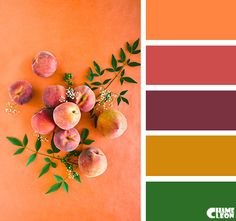 Color Palette Colour Pallette, Colour Schemes, Color Combinations, Color Harmony, Color Balance, Living Colors, Design Seeds, Pantone, Color Swatches