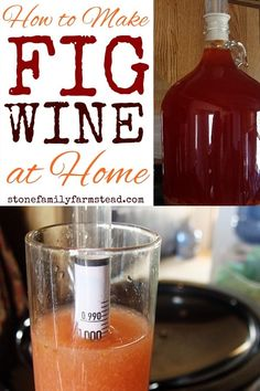 Overrun with figs? Learn how to make fig wine at home! It's easy, it's smooth, and it only takes three months from start to finish! Homemade Wine Recipes, Fig Recipes, Drink Recipes, Delicious Recipes, Fig Wine, Wine Magazine, Buy Wine Online, Wine Deals, Wine Case
