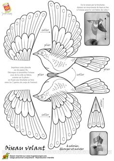 Coloriage oiseau legende nb sur Hugolescargot.com - Hugolescargot.com