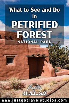 Our blog will help you plan your vacation to Petrified Forest National Park. This great park in Arizona is amazing-don't miss it! Petrified Forest National Park, Arizona Travel, What To Pack, Where To Go, Just Go, National Parks, Hiking, Vacation, Amazing
