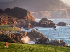 Pacific Coast Highway from San Francisco to Los Angeles : 10 Road Trips You Can Take in a Week : TravelChannel.com