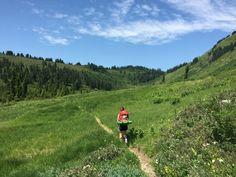 Meander Meadow Trip Report - Seattle Backpackers Magazine
