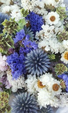 French summer flower bouquet from Montaigu de Quercy, Aquitaine Blue flowers