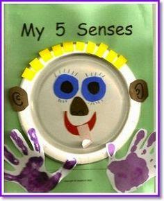 Sempre criança: Cinco Sentidos