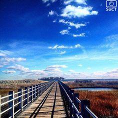 Connecticut  ✨ Photographer  @ievab1✨  #ScenesofNewEngland  Pic of the Day  11.14.15 ✨ C o n g r a t u l a t i o n s ✨ ----------------------------------------- #scenesofCT #milfordCT #silversandsbeach #silversandsbeachstatepark #pathlesstraveled #coastalconnecticut #ctparks #ctvisit  #justgoshoot #ig_ct #exploreRI #newenglan...
