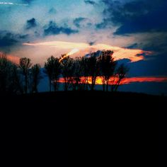 Fire and trees sunset Wildlife, Trees, Fire, Celestial, Sunset, Animals, Outdoor, Outdoors, Animales