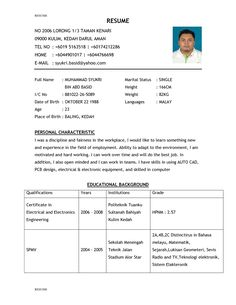 A Professional Resume Alluring Resume Example For Job  Httpwww.resumecareerresumeexample .