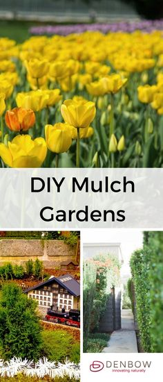 DIY mulch gardens are easier than you would think. Learn about the benefits mulch garden landscapes for your garden beds. Visit denbow.com for more on landscaping, gardening, and mulch products.
