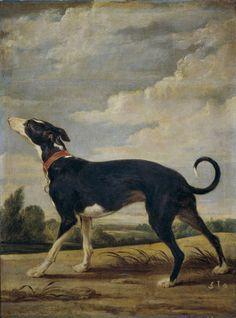"""""""Un galgo al acecho"""", Paul de Vos. Óleo sobre lienzo, siglo XVII"""