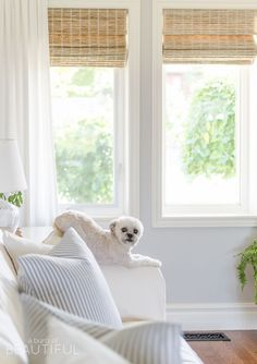 Woven wood shades the best window treatments window for Modern farmhouse window treatments