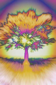 Tree of Life trippy Art Beat, Where Is My Mind, Psy Art, Hippie Art, Psychedelic Art, Tree Art, Fractal Art, Tree Of Life, Amazing Art