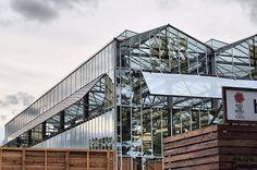 greenhouse - 温室