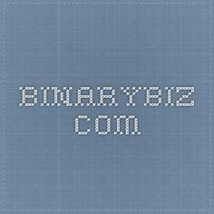 binarybiz.com