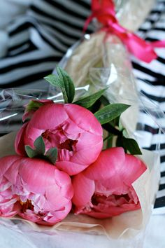 peonies and stripes