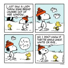 Peanuts - Snoopy and Woodstock Snoopy Cartoon, Snoopy Comics, Peanuts Cartoon, Cute Comics, Peanuts Snoopy, Peanuts Comics, Snoopy Love, Snoopy And Woodstock, Snoopy Pictures