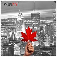 Travelling is always a good idea- Plan and implement with Winny   #TravellingCanada #Winnyimmigration #Canada