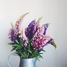 Lavender and light pink