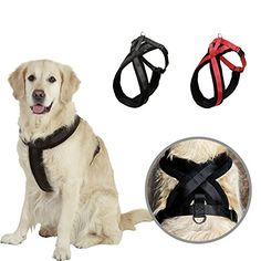 NACOCO Large Dog Harness Pet Walking Harness with Comfortable Fleece Padded Small Black *** To view further for this item, visit the image link.Note:It is affiliate link to Amazon.