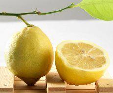 """En Bellamia, hemos elegido el sabor deLimón, como el sabor de la semana. Sabías que elLimón que utilizamos, es elLimón de Sorrento? ElLimón de Sorrento, es rico en aceites vegetales, vitamina C y sales minerales. Con nuestro helado sabor Limón, queremos rendir homenaje a este sabor """"tan clásico"""", respetando en todo momento la riqueza de este típico producto italiano. Con este calor, que bien sienta el helado de Limón, a que sí? Te esperamos con nuestro auténtico helado artesano aquí en… Sorrento, Sales, Fruit, Food, Wealth, Lemon Ice Cream, Preserve, Oil, Italian Ice"""