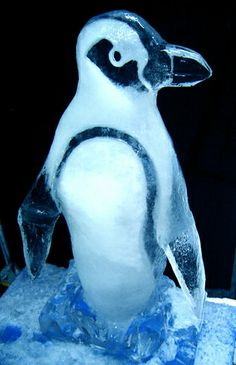 Ice Sculpture Penguin | Flickr - Photo Sharing!