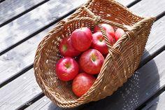 野菜や果物をそのまま保管しても素敵です。