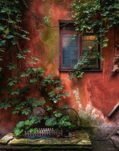 Nice to meet you. Nice To Meet, Meet You, Red Windows, Old World, Life Is Good, Old Things, Rustic, Photography, Painting