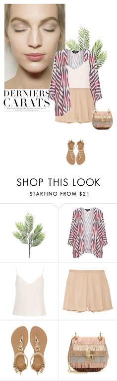 """""""Neat"""" by khammy on Polyvore featuring navabi, Raey, Elizabeth and James, Faith and Chloé"""