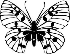 The first of a small series. Butterfly I Insect Coloring Pages, Colouring Pages, Butterfly Illustration, Butterfly Drawing, Friendship Bracelets Designs, Paper Animals, Beautiful Butterflies, Fabric Painting, Paper Cutting